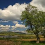 Kornyi-tó
