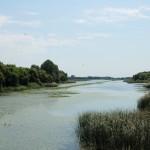 Kis-Balaton Tájvédelmi Körzet